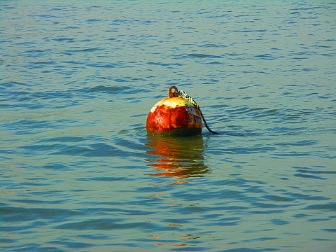 NY- Buoy in the New York Harbor