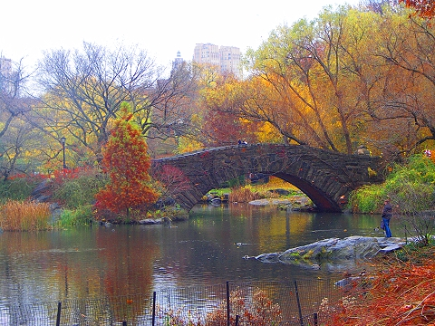 Езерото Ny_central_park_duck_pond_fall_color_10_141