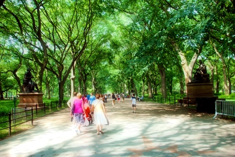 the mall central park nyc. A great public park sep spring