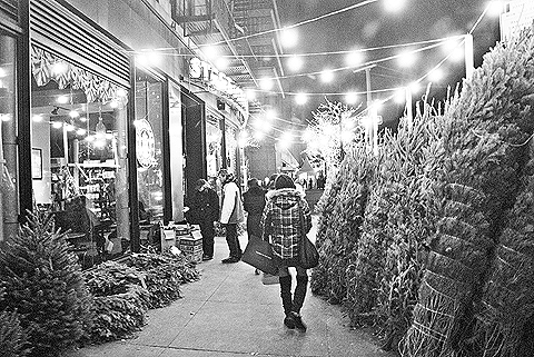 NY Columbus Ave Christmas Trees For Sale Black And White 01