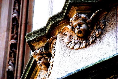 NY- Gargoyles, Cherubs, Beasts and Dragons -Riverside Drive