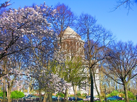 NY- Sakura Park Cherry Blossoms, Grants Tomb