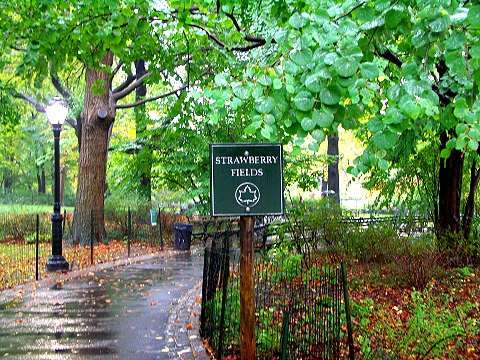 NY- Strawberry Fields in the rain- Central Park