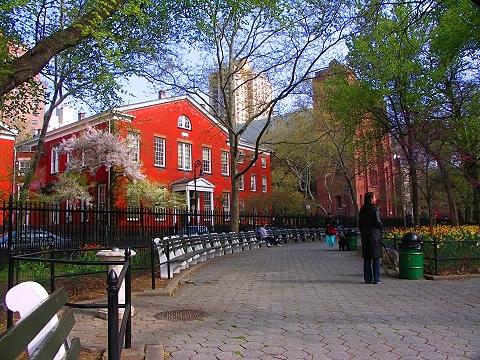 Ny flowering trees in stuyvesant square i photo new york for Stuyvesant ny