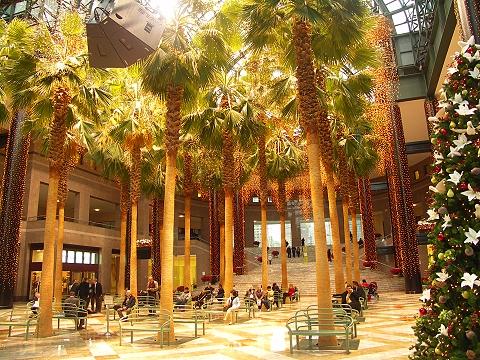 Ny Battery Park Winter Garden At World Financial Center